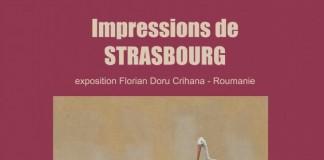 Vernisaj Crihana Strasbourg Expozitie pictura Florian Doru Crihana Consiliul Europei La Strasbourg 2017 Romani in Strasbourg
