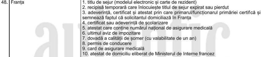 vot diaspora franta romani strasbourg