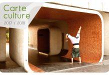 Carte Culture Strasbourg 2017 - Studenti Romani in Strasbourg - Romani la Strasbourg